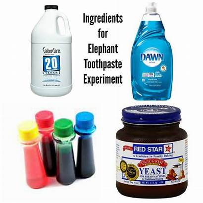 Elephant Toothpaste Ingredients Experiment Science Yeast Midwestern