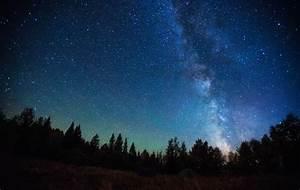 In defense of dark skies: How artificial lighting disrupts ...