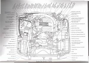 1970 Ford 302 Engine Parts Diagram