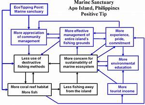 Feedback Diagrams For Teaching Ecotipping Points