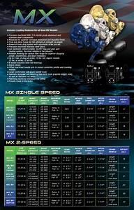 Avet Mxj Single Speed 5 8 Narrow All Colors Mmrods