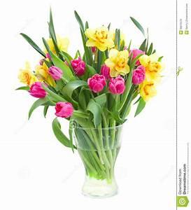 Tulpen In Vase : blumenstrau von tulpen und von narzissen im vase stockfoto bild 39075579 ~ Orissabook.com Haus und Dekorationen