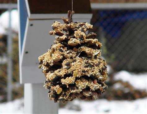 pine cone bird feeder Archives - Bird FeedersBird Feeders