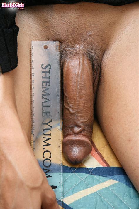 Average Shemale Penis - Tranny Cock Measure 36 Pics   CLOUDY GIRL PICS