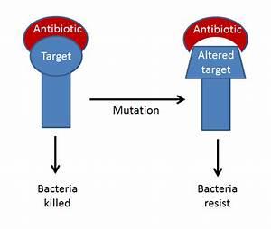 Antibiotic Resistance  U2014 University Of Leicester