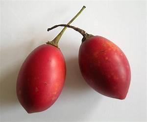 The Amazing Fruits and Veggies of Ecuador   MkMeier's Blog