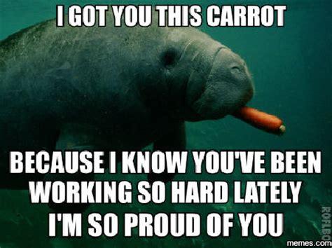 Proud Of You Meme - home memes com