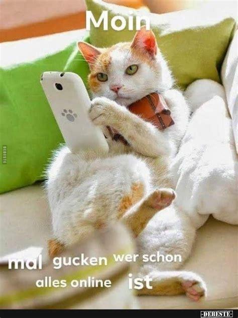debestede lustige bilder witze  und fb sprueche