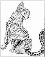 Coloring Cats Cat Zentangle Patterns Animals sketch template