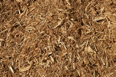 which mulch is best top 28 best type of mulch best mulch types choosing the right mulch for a garden related