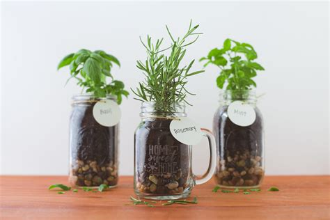 Jar Home Decor Ideas by 35 Gift Ideas For Coworkers They Ll Actually Want