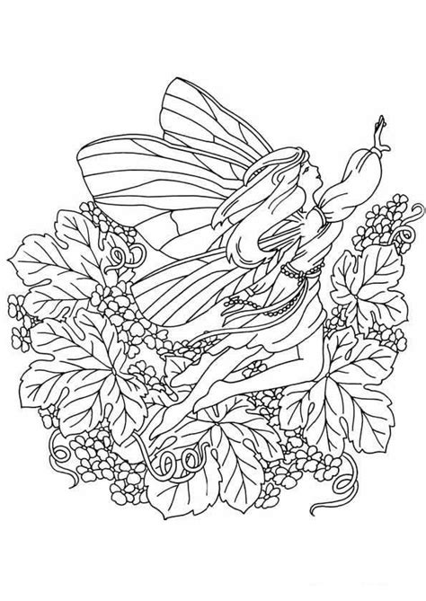 kids  funcom  coloring pages  fairies