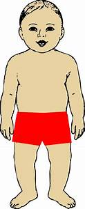 Body Parts Clipart - Clipart Bay