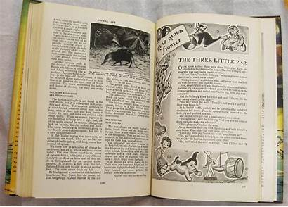 Knowledge Encyclopedia Children Vols