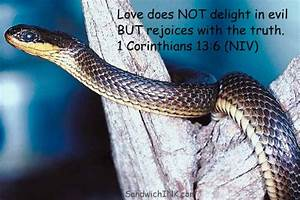 Serpent Bible Quotes. QuotesGram