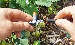 tropfschlauch bewasserung selbstde With französischer balkon mit garten bewässerungssystem gardena