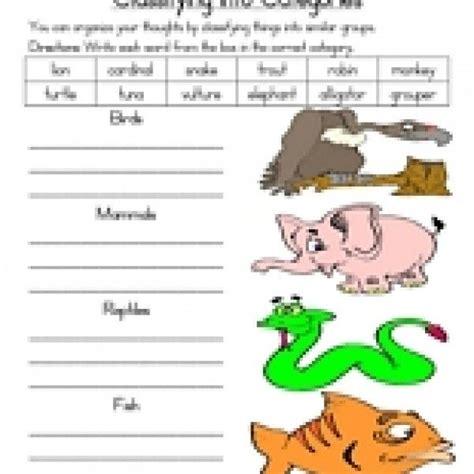 animal classification worksheet animal classification