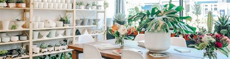 plant shed nyc plant and flower delivery nyc plantshed