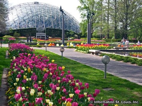 mo botanical garden missouri cremation services neptune society locations in mo