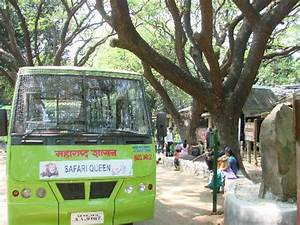 Bus that takes you for Tiger Safari - Picture of Sanjay ...