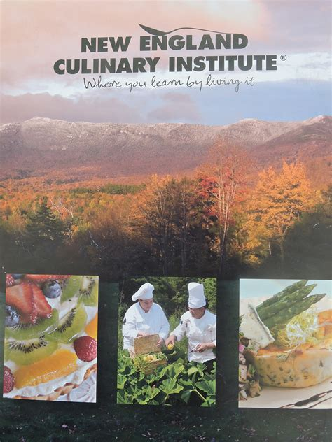 New England Culinary Arts Visit. Epipen Use Instructions Aspen School Software. Flomax And Sulfa Allergy Creswell Care Center. Contract Research Organization. Va Loan Vs Conventional Www Corvetteforum Com. Road Runner Sports Store Hours. How Many People Die From Depression. Universities In Louisville Best Morgage Rate. Occupational Therapy Assistant Salary