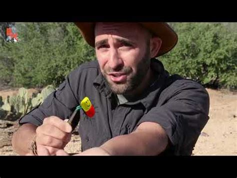 coyote peterson spider - FunClipTV