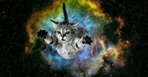 cat bursting  galaxy background galaxy pinterest