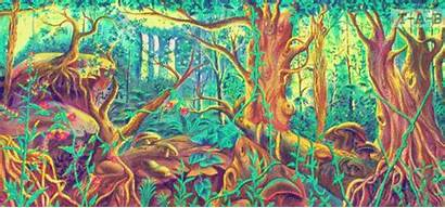 Mushrooms Trippy Psychedelic Drugs Acid Trip Forest