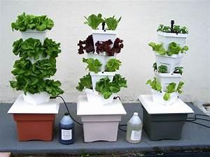 Jardiniere Interieur : jardini re d int rieur mini potager cuisiner ce qu on a ~ Melissatoandfro.com Idées de Décoration