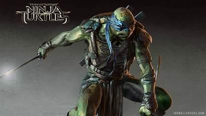 Leonardo Ninja Tmnt Wallpapers Turtles Mutant Teenage