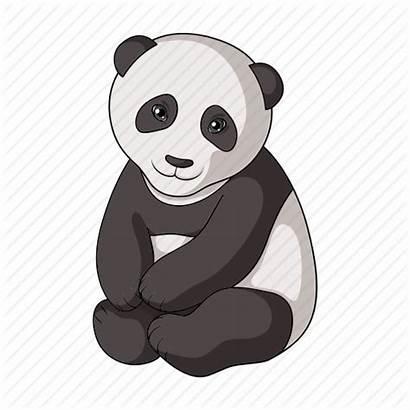 Herbivore Panda Cartoon Icon Animals Bitmap Zoo