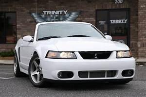 2003_Mustang_Terminator_Cobra_KB22_front - Trinity Motorsports