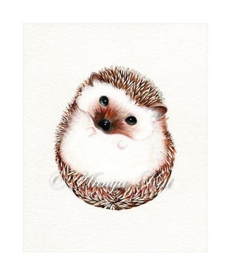 hedgehog art print watercolor woodland animal