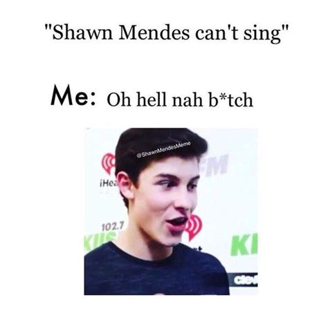 Shawn Mendes Memes - the 167 funniest tweets of all time shawn mendes memes and twitter