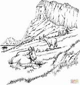 Coloring Mountains Rocky Mountain Pages Printable Goats Popular sketch template