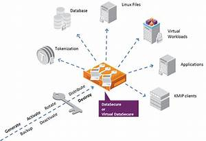 Safenet Datasecure