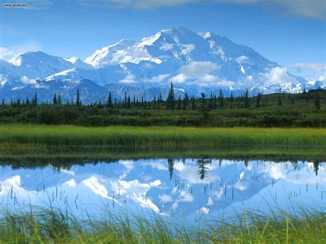 Reflections Mount Mckinley Denali National Park
