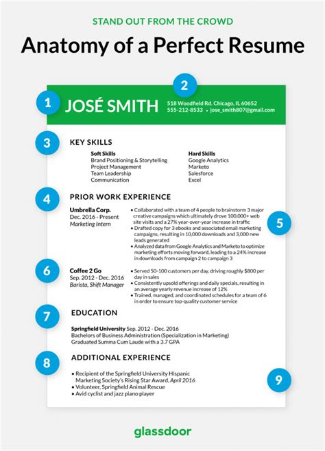 What Does A Resume Look Like by The Resume Looks Like This Glassdoor
