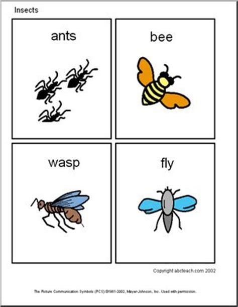 Flashcards Insects (primary) Abcteach