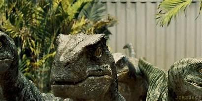 Jurassic Velociraptor Delta Park Raptors Echo Charlie
