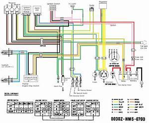 Wiring Diagram For 110cc 4 Wheeler