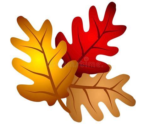 clipart autunno l albero di quercia di autunno lascia clipart