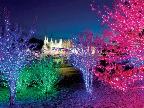 washington dc christmas lights 4 places to see d c s best christmas lights the