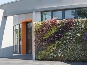 Mur Végétal Extérieur : exterior green wall vision v g tale ~ Premium-room.com Idées de Décoration