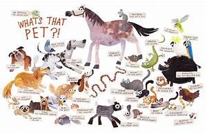 Some Pets Book By Angela DiTerlizzi Brendan Wenzel