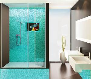 thoughts on tvs in the bathroom tigerdroppingscom With putting a tv in the bathroom