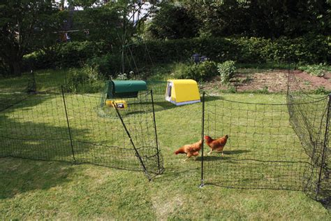 how to keep chickens out of garden chicken run and fencing options gallinas gu 237 a omlet es