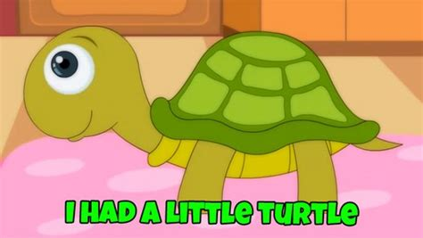 There was a little turtle by: I Had A Little Turtle - video dailymotion
