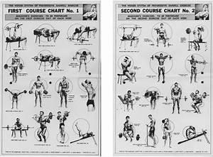 Weider Workout Chart Pdf