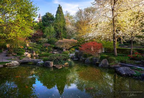 Für Japanischen Garten by Die 86 Besten Fr 252 Hlings Hintergrundbilder